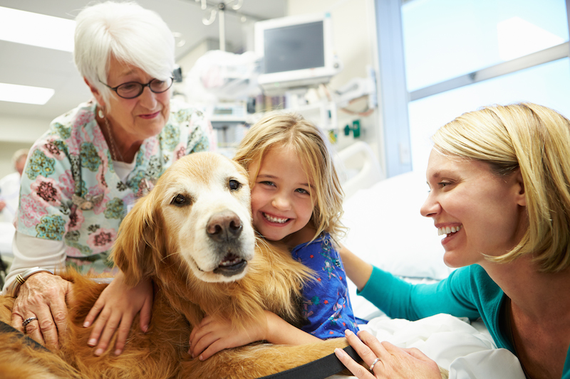 Understanding Canine Therapy and How it Helps Children with Special Needs