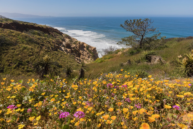 Enjoy an Accessible San Diego – 10 local spots offer helpful perks to kids and caregivers