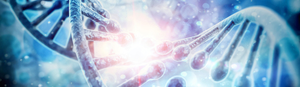 Benefits, Risks and Limitations of Genetic Testing